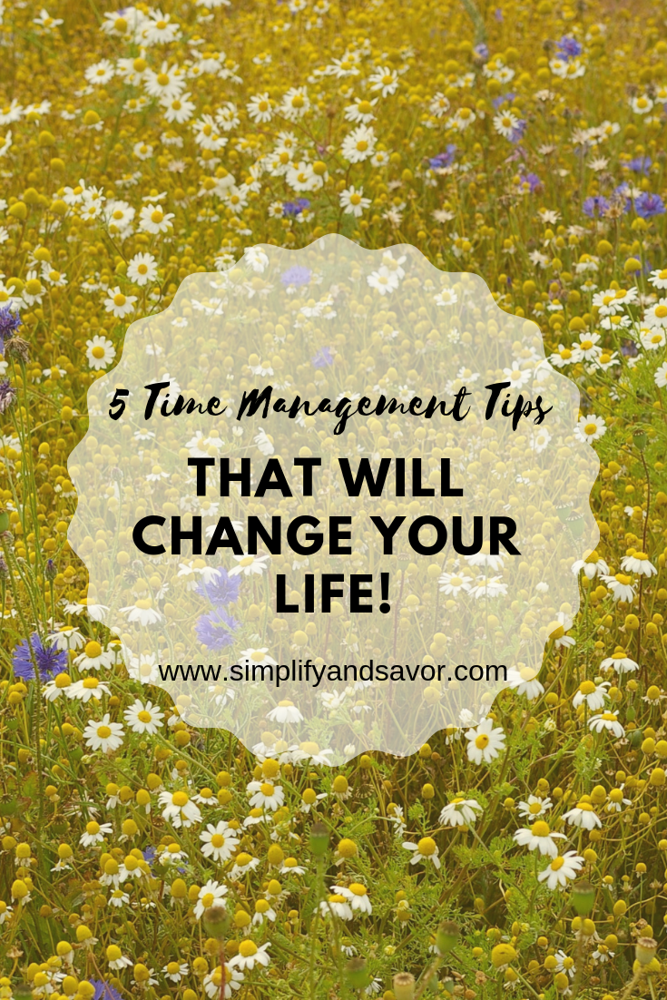 A field of wildflowers with the text 5 Time Management Tips that will Change your life!