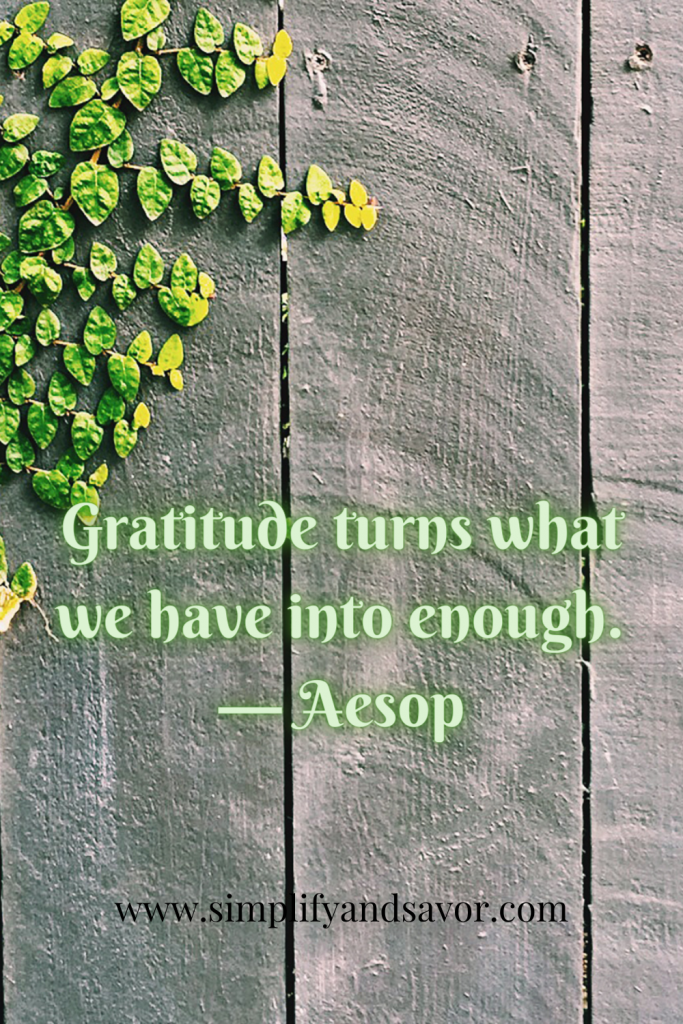 Gratitude turns what we have into enough. — Aesop