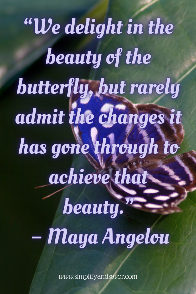 This photo is of a beautiful blue butterfly with black and white details. It is sitting on the leaf of a plant, and the quote. We delight in the beauty of the butterfly, but rarely admit the changes it has gone through to achieve that beauty. By Maya Angelou