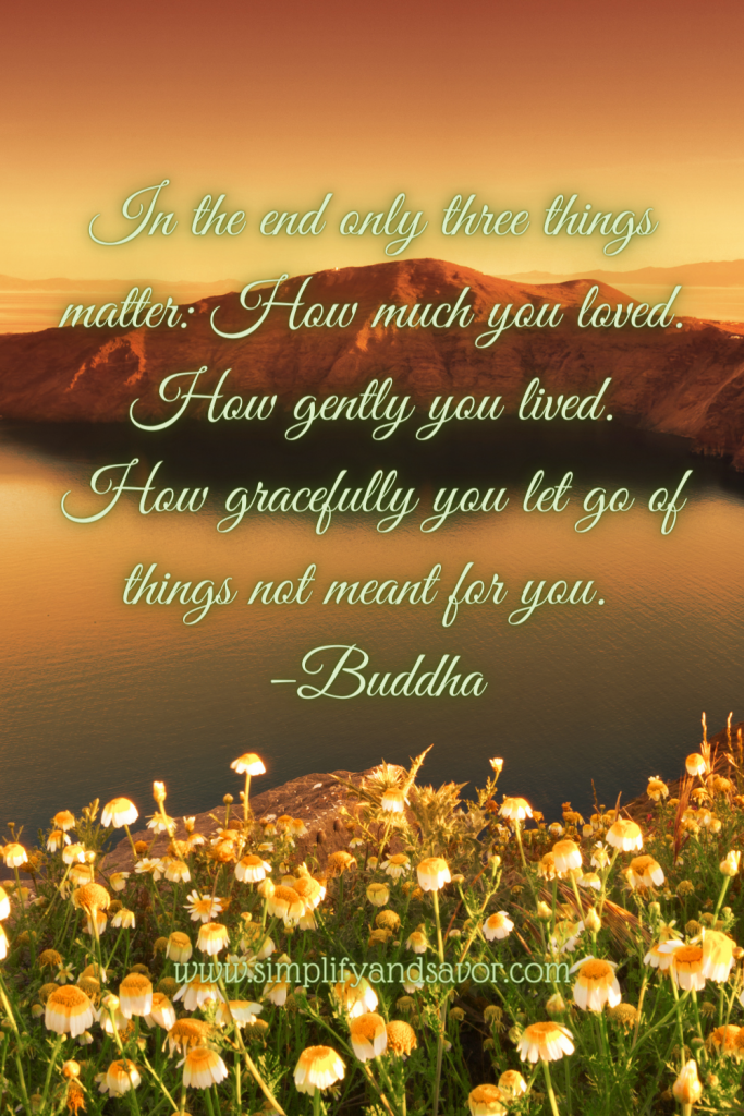 In the end only three things matter: How much you loved. How gently you lived. How gracefully you let go of things not meant for you. -Buddha